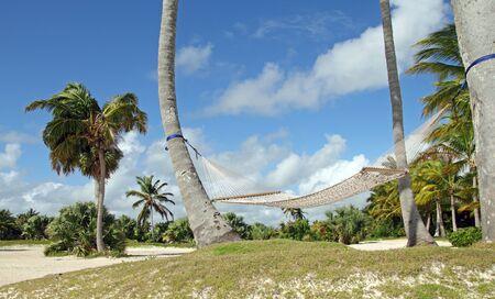 hammock on a wild caribbean beach