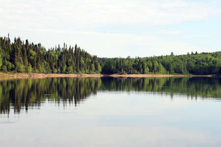 very calm lake with forest and reflection into the water photo