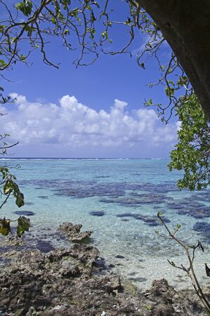 polynesia: seascape with crystal water and coral reef
