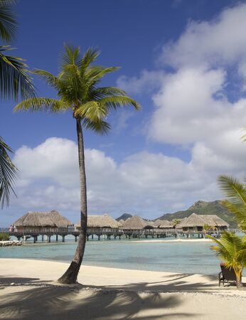 over water bungalows in bora bora island photo