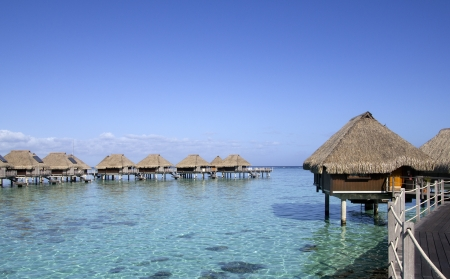 polynesia: over water bungalows and coral reef