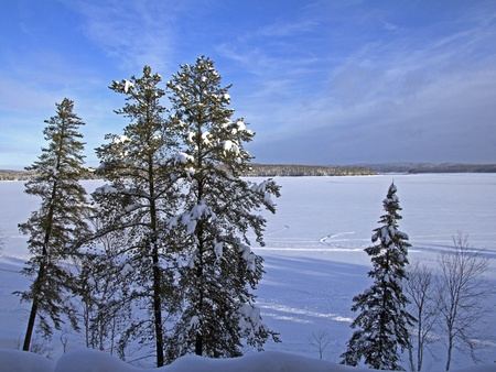 frozen lake with trees covered with snow Stock Photo - 17102768