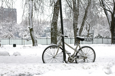 old bike in a park with a lot of snow photo