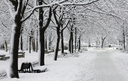 image of a urban park after a huge snowfall Imagens