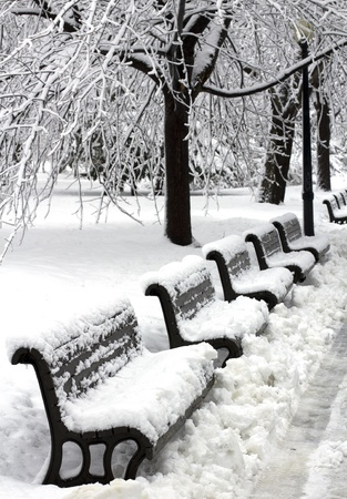 image of a urban park after a huge snowfall Stock Photo