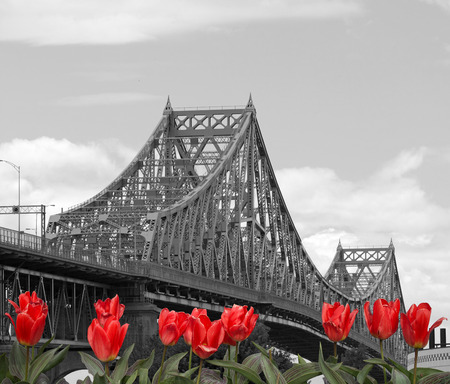 traverse: Jacques-Cartier Bridge in Montreal, Canada