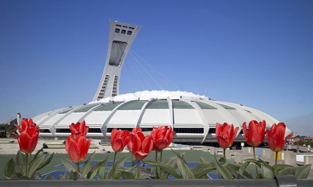 olympic stadium: Montreal Olympic Stadium