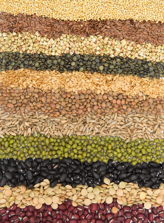 Border Collection of Cereal Grains and Seeds