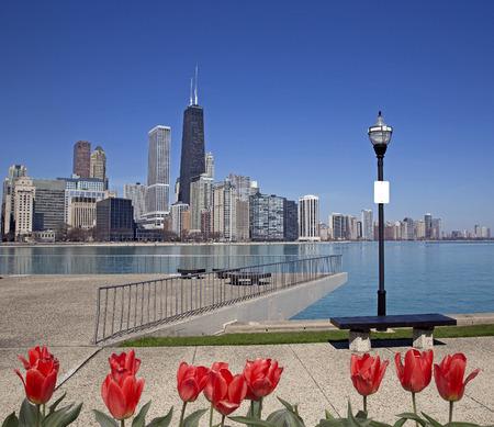 前面に赤いチューリップとシカゴ シティ ビュー 写真素材