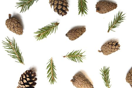 New year's background concept. Texture of pine cones and spruce branches. For Christmas design. Isolated background. Archivio Fotografico