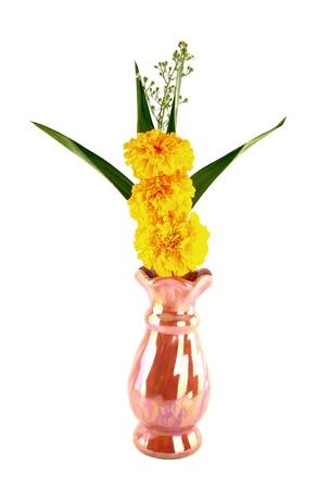 pandanus: Marigold and pandan in vase for worship on white background Stock Photo