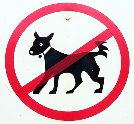 no dogs sign or pet photo