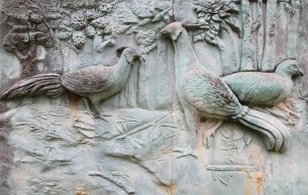 detail of bird texture at stone wall photo