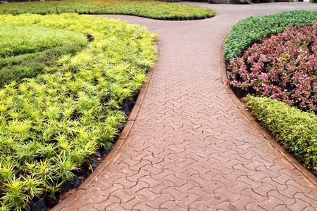 Stone pathway in garden photo