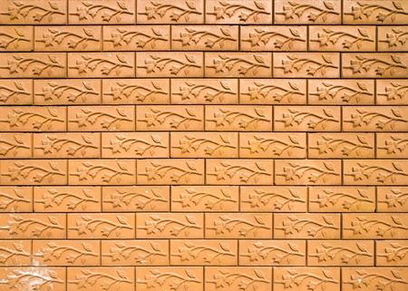 brick wall and branch  texture Stock Photo - 13130416