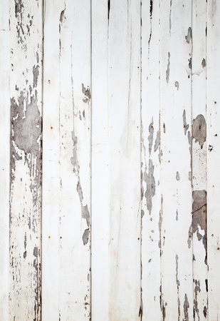 white wood texture with natural patterns