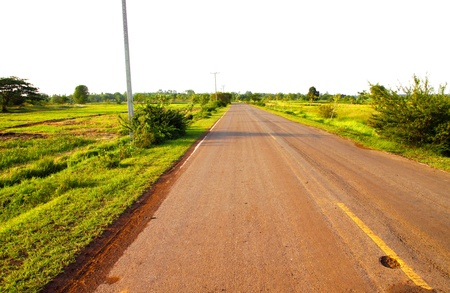 A country road running through green fields, Thailand photo