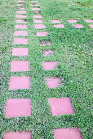 stone way in green grass photo