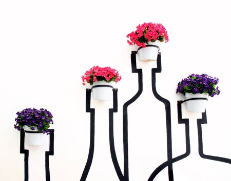 flower decoration in flowerpot on white wall photo