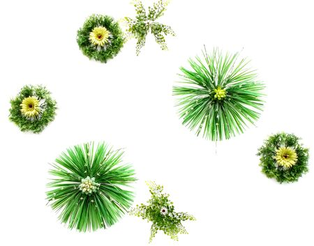 flower decoration texture  on white wall background photo