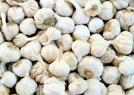 close up of garlic on market stand photo