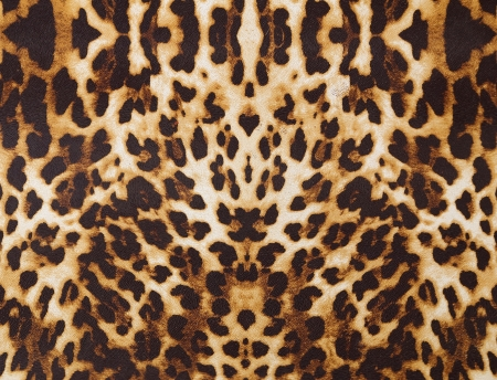 cheetah: abstract background with leopard texture