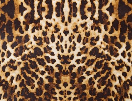 guepardo: resumen de antecedentes con la textura de leopardo