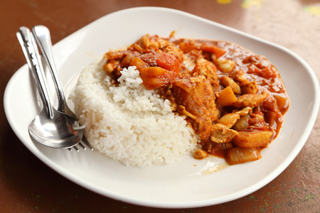 spicy chicken curry and rice on dish Stock Photo - 22469015