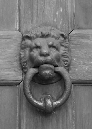 vintage oriental knocker door of metal lion on wood door (gray scale) photo