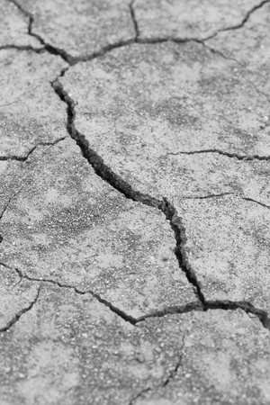 close-up of dry dracked soil ground texture (grayscale) photo