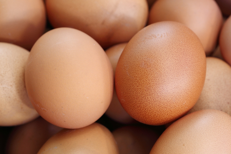 close-up of fresh eggs for sale at a market photo