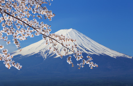 peak of Mount Fuji with Cherry Blossom, view from Lake Kawaguchiko, Japan photo