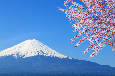 peak of Mount Fuji with Cherry Blossom, view from Lake Kawaguchiko, Japan photo