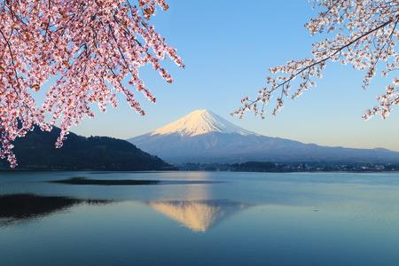Mount Fuji with Cherry Blossom, view from Lake Kawaguchiko, Japan photo