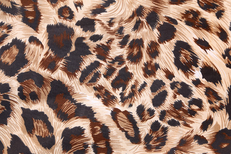 abstract background with leopard texture photo