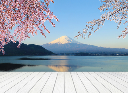 cherry hardwood: white wood terrace with Mt Fuji and Cherry Blossom