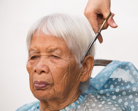 hair stylist: Hair stylist cutting senior womans gray hair