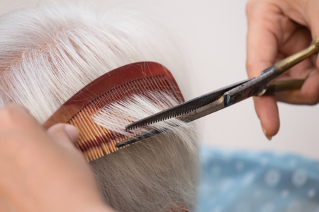 comb hair: Hair stylist cutting senior womans gray hair