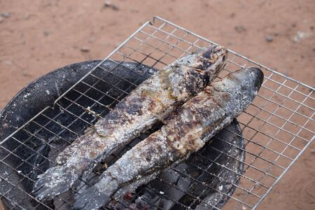 striped snakehead fish: grill striped snakehead fish with salt over charcoal