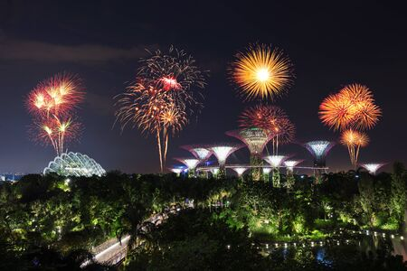 city park skyline: beautiful firework over Gardens by the bay with light at night, Singapore