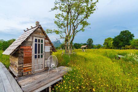 petit chalet en bois avec champ de fleurs de cosmos jaune