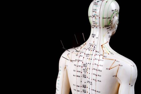 male acupuncture model with needles on a black background