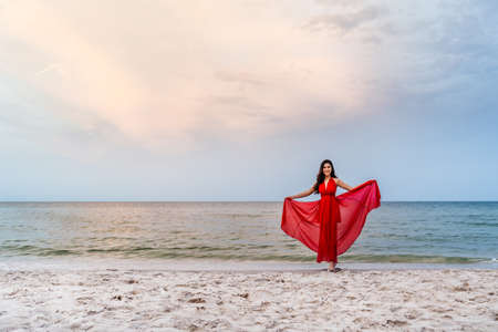 young woman with arms spread in a red dress on the sea beach with wind blow 免版税图像