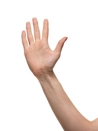 Hand isolated on white background photo
