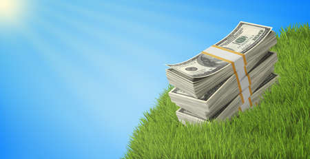 wads: Wads of dollars lying on grass under blue sky