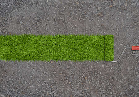 land development: A strip of green grass made by roller for painting on a ground with small stones. Planting of greenery. Stock Photo