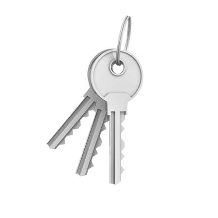 3d rendering of two isolated silver keys on a key ring