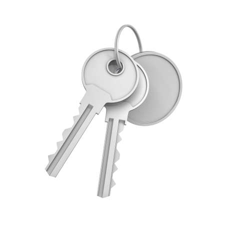 3d rendering of two isolated silver keys on a key ring with a blank round medal behind.