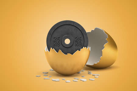 3d rendering of 25 kg weight plate hatching out of golden egg on yellow background