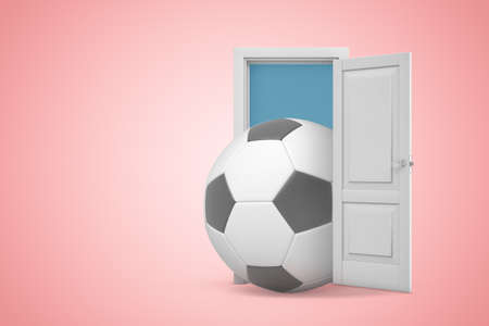 3d rendering of football ball in white open doorway on light pink background Archivio Fotografico - 129484834